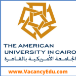 Faculty Position at The American University in Cairo