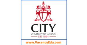 Postdoctoral Fellowship at City University of London, United Kingdom