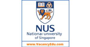 Postdoctoral Fellowship at National University of Singapore (NUS), Singapore