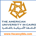 Multiple Faculty Position at American University in Cairo